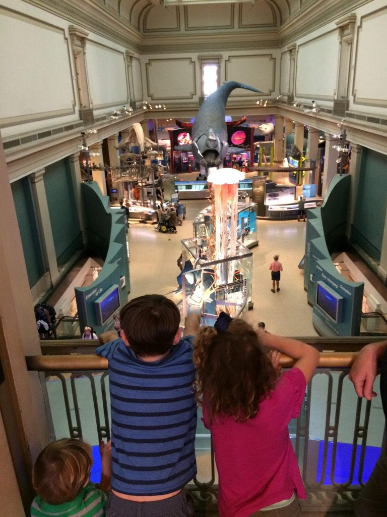 Children looking into Museum of Natural History
