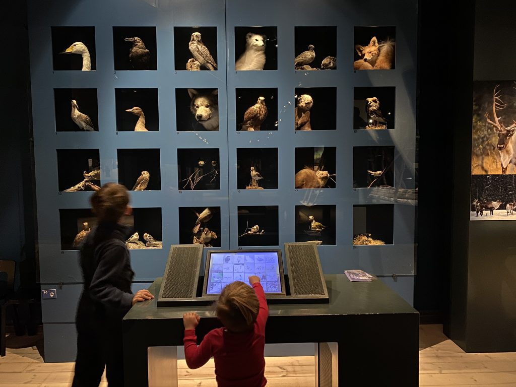 picture of children exploring Arkticum in Rovaniemi, Finland